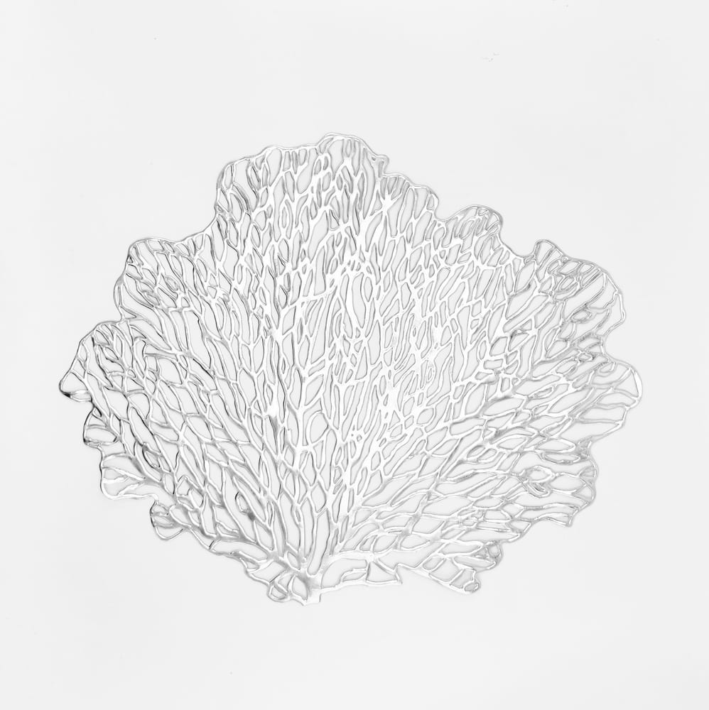 46111-60893d58092d18-45447974-silver-leaf-scaled